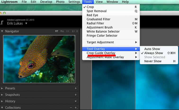 Crop Overlay Adobe Lightroom